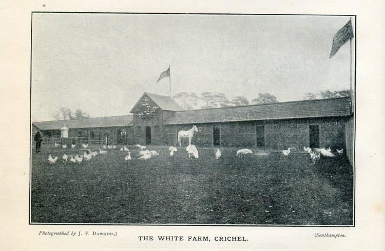 white farm.jpg