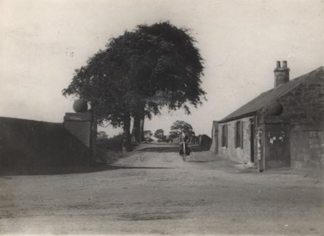 Two Ball Lonnen 1905 B.jpg