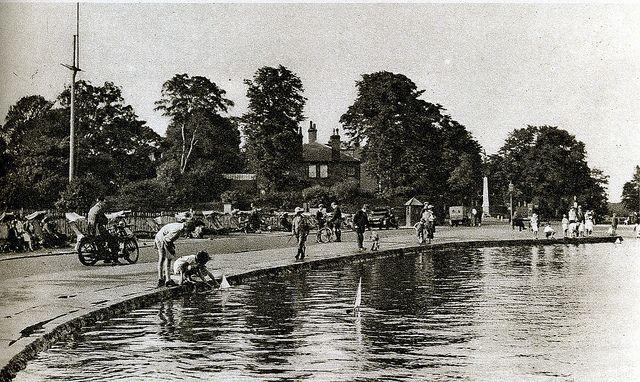 Highgate Pond.jpg