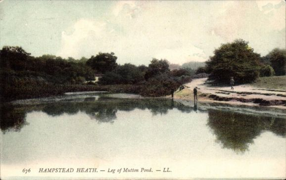 Hampstead-Heath-Leg-of-Mutton-Pond-676