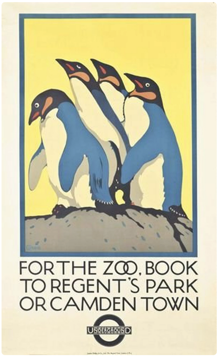 London Zoo 1926